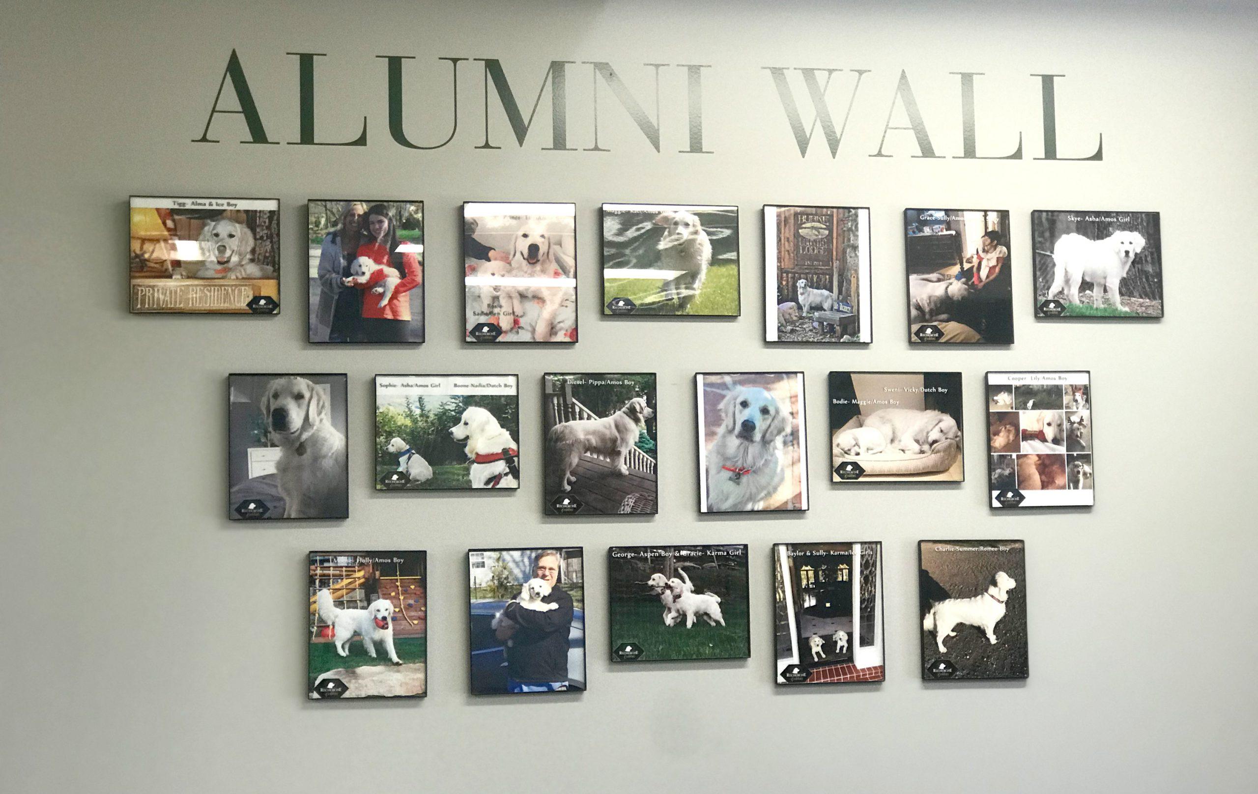 Alumni_Wall