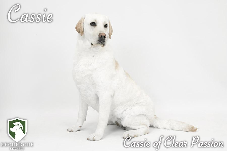 Cassie9
