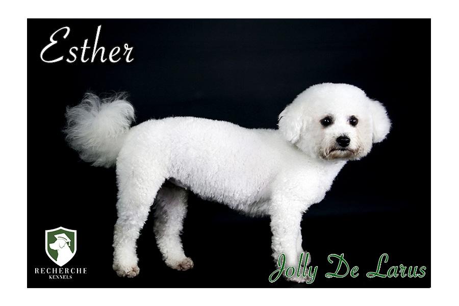 Esther9-1